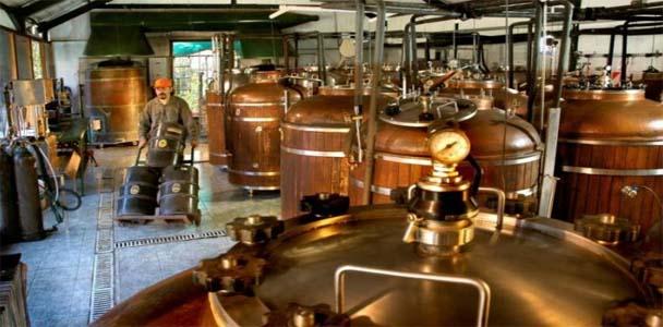 fabrica-de-cerveza-artesan